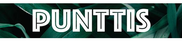 Punttis_teksti_nettiversio